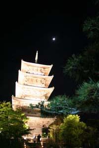 国分寺ライトアップ2