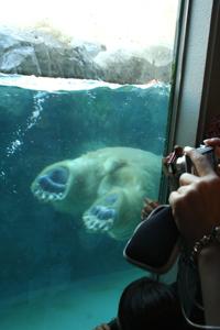 あさひやま動物園